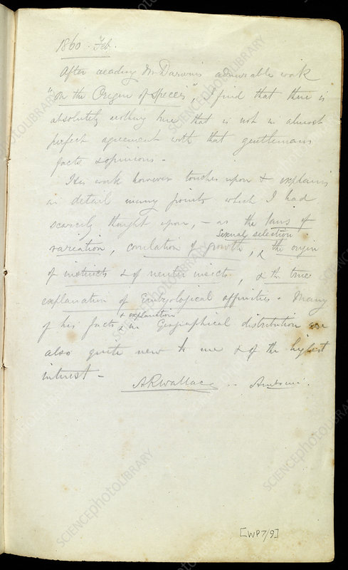 Notes by Wallace on Darwin, 1860