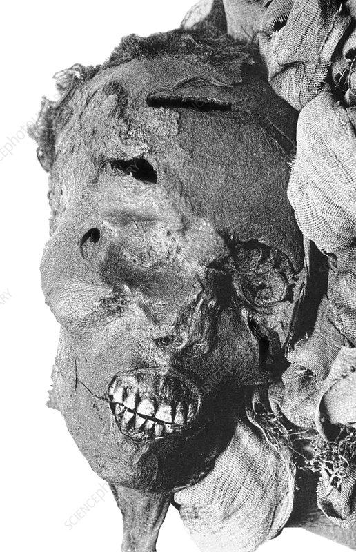 Seqenenre Taa II, the violent death of a pharaoh