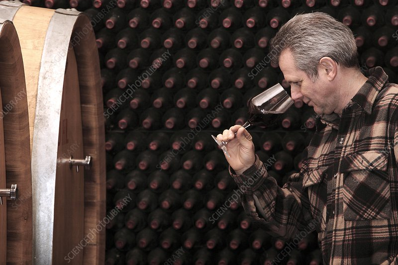 Wine quality inspection