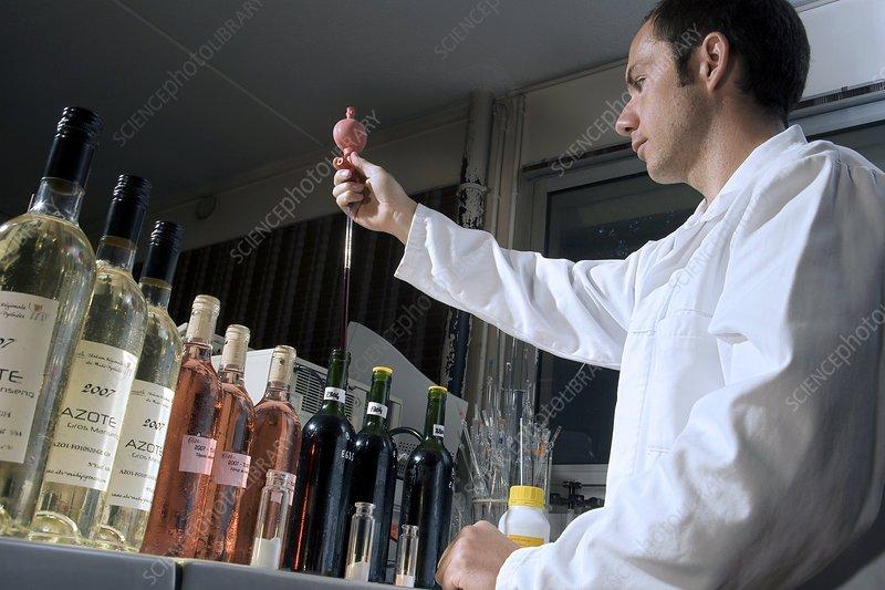 Grape aroma research