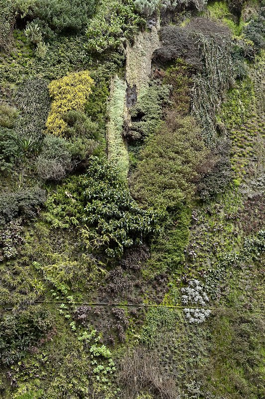 Living Wall, Madrid, Spain