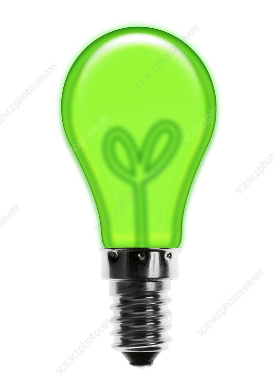 Eco-friendly light bulb, conceptual image