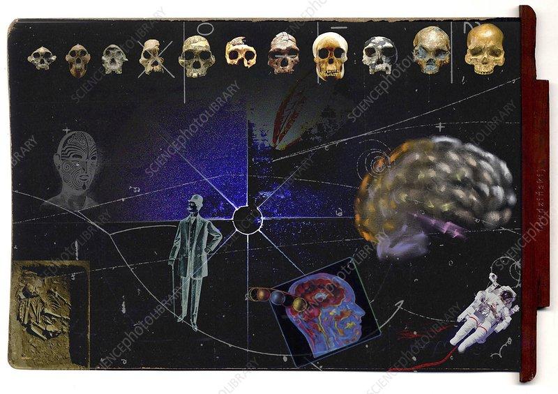 Genetics and evolution, conceptual image