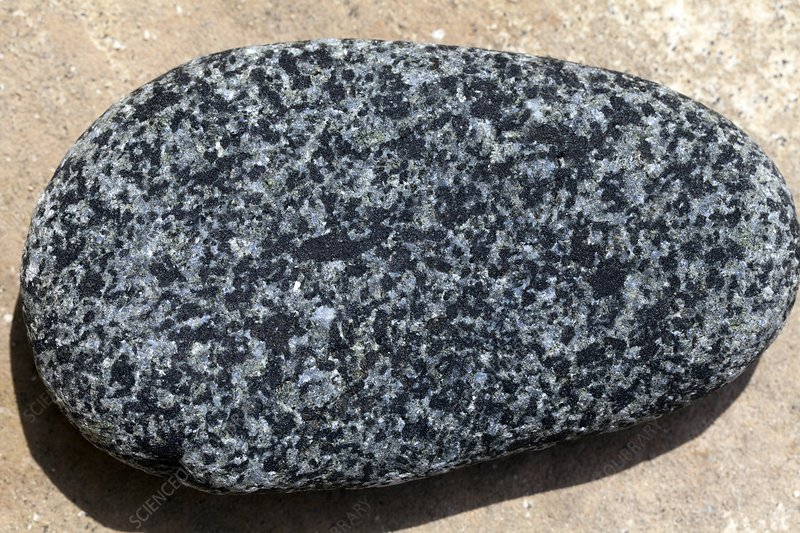 Rounded pebble of gabbro