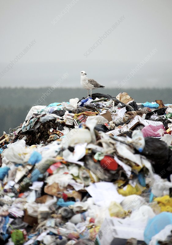 Pile of waste at landfill