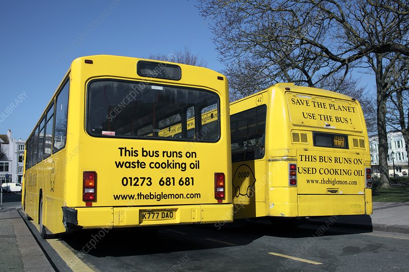 Waste cooking oil buses