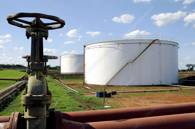 Biofuel production, Brazil