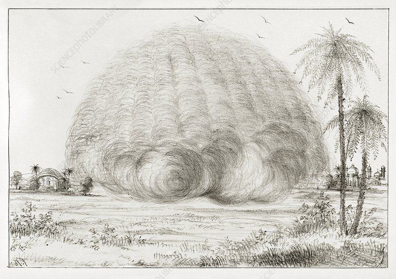 Developing sand storm, 19th century