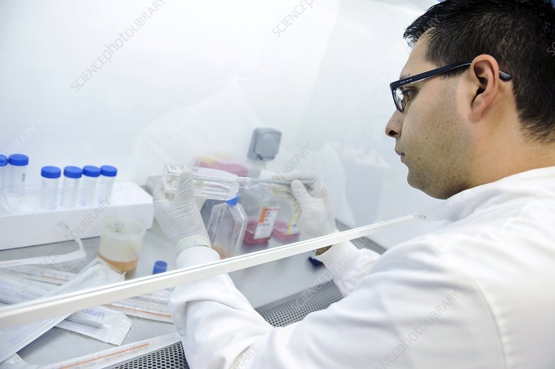 Scientist working in a fume cupboard