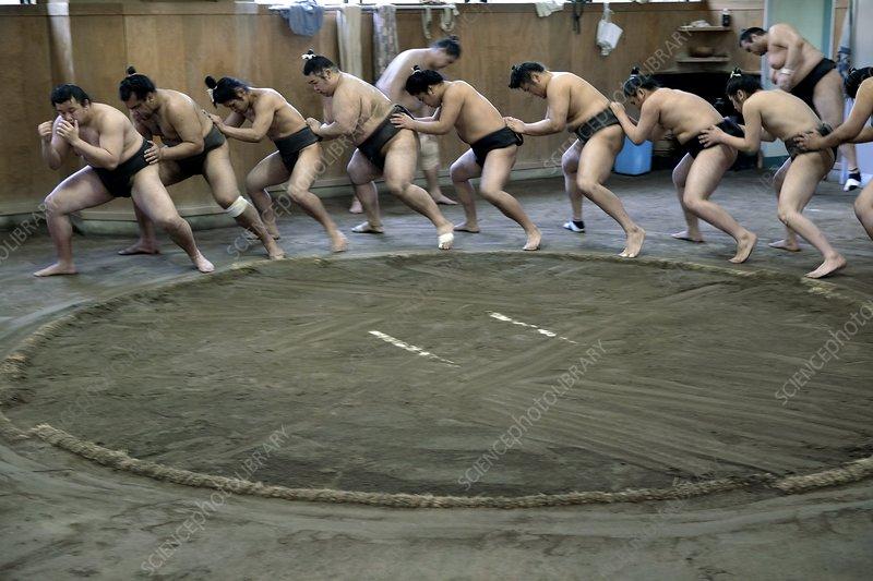 Sumo wrestlers, Japan