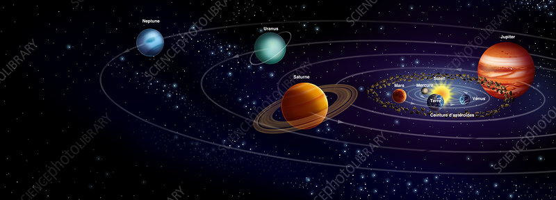 Solar System Planets And Orbits  Diagram - Stock Image - C010  7791