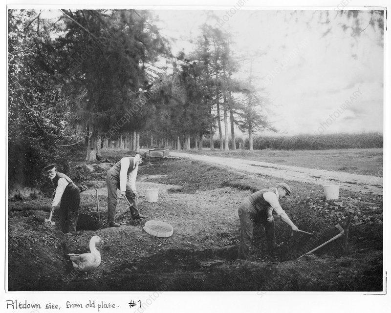 Piltdown excavations