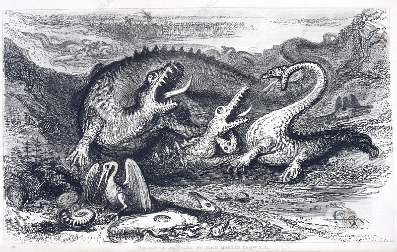 'The Age of Reptiles', artwork