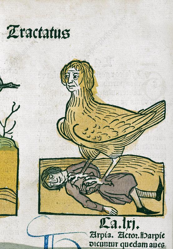 'A Medieval nightmare', artwork