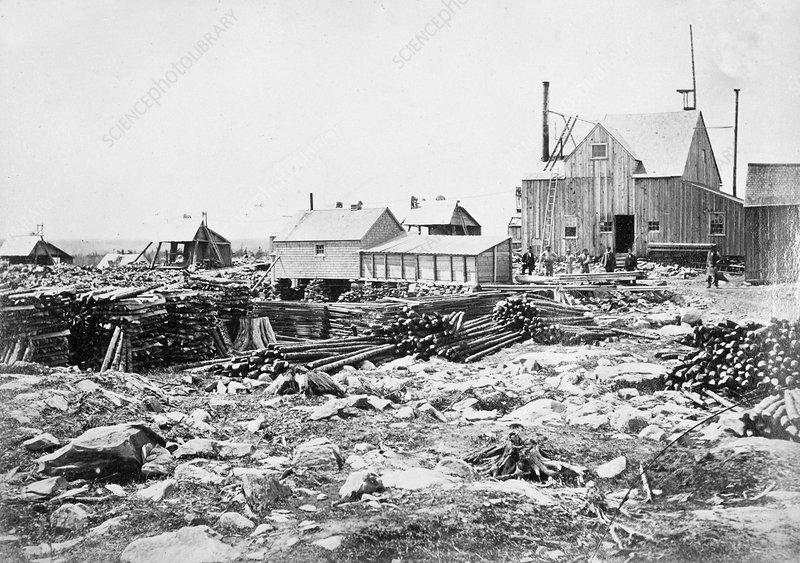 Gold Mine, 1873