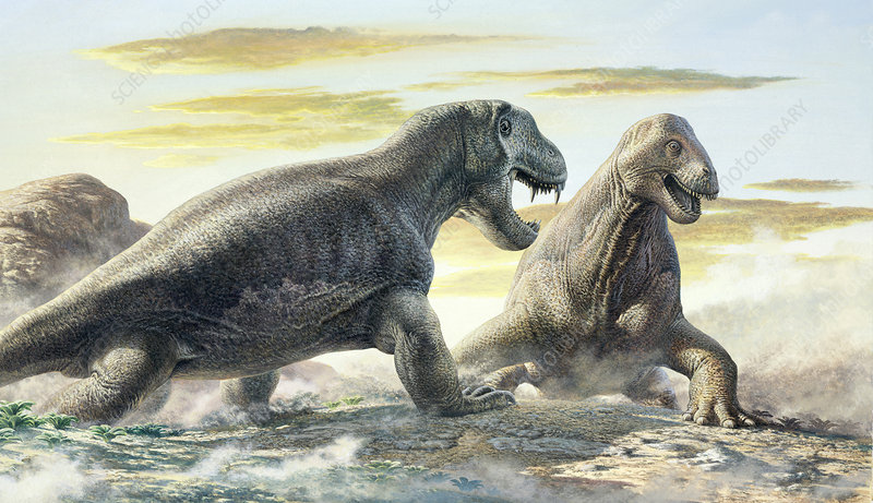 prehistoric protomammals stock image c0108414