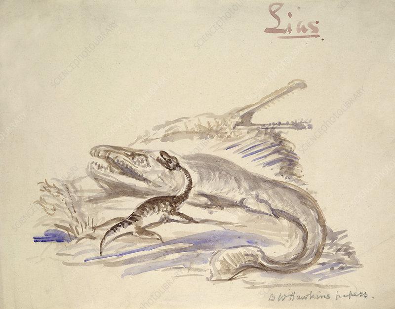 Prehistoric marine reptiles