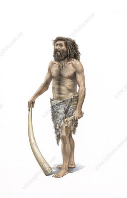 Cro-Magnon human