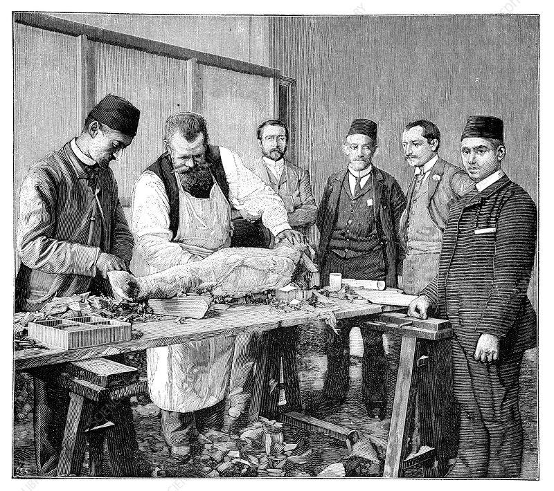 Mummy examination, 19th century