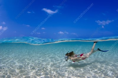 Snorkeller in the Maldives