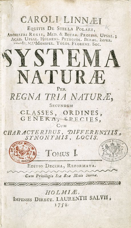 Systema Naturae cover page - Stock Image C011/0184 ...