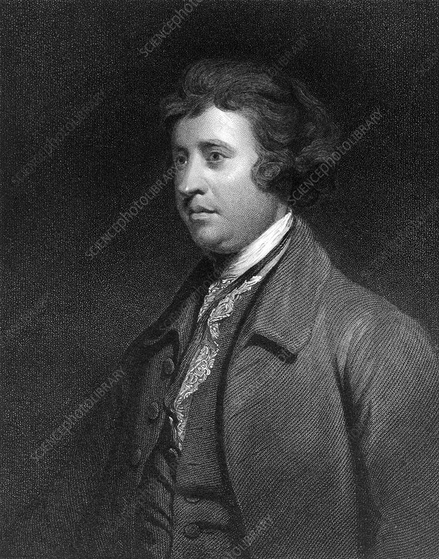 Edmund Burke, Irish politician