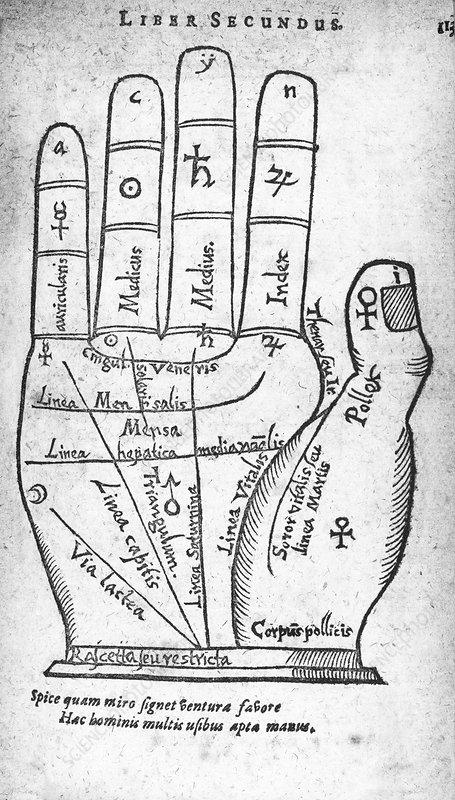 17th Century palmistry diagram - Stock Image - C011/0627