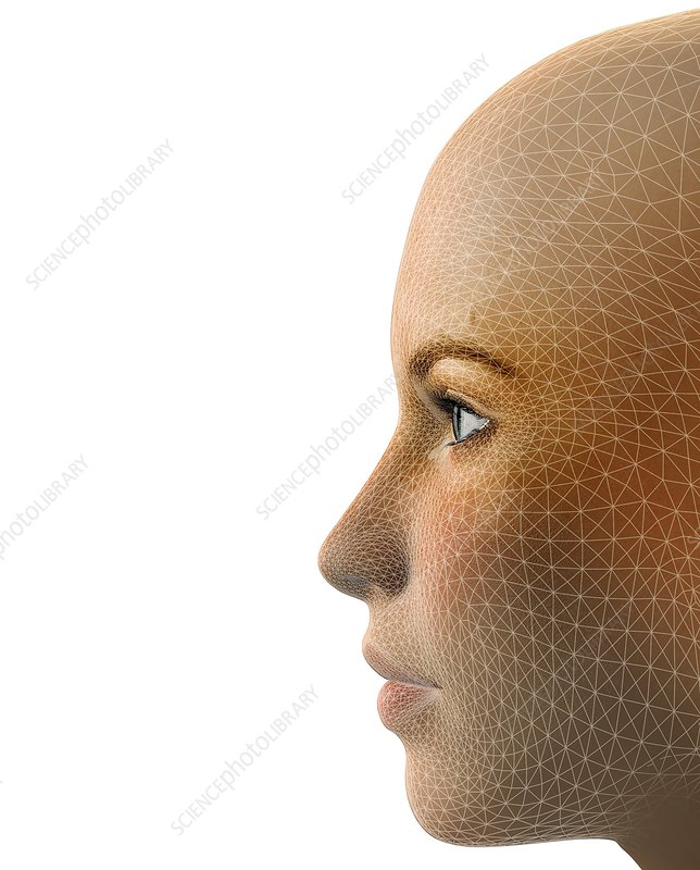 Facemapping, artwork