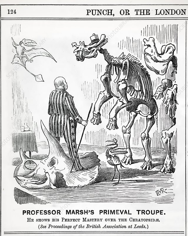 1890 Punch Cartoon Othaniel Marsh