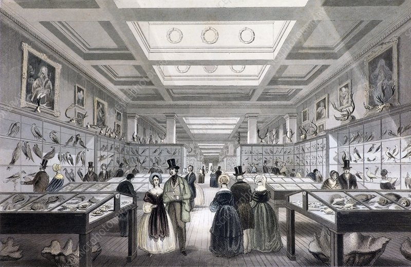 1841 British Museum Zoological Gallery c