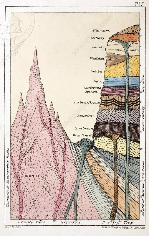 1838 Mantell's Geological Strata Section.