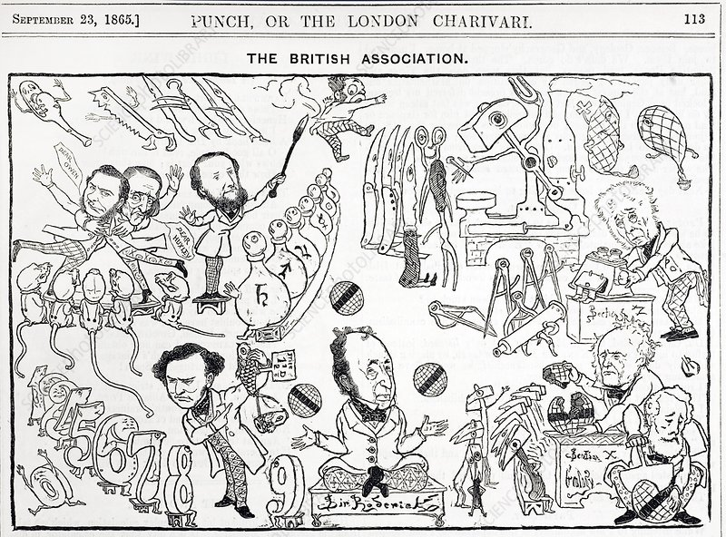 1865 British Association cartoon by Punch