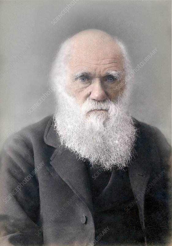 1879 Colour Charles Darwin photograph
