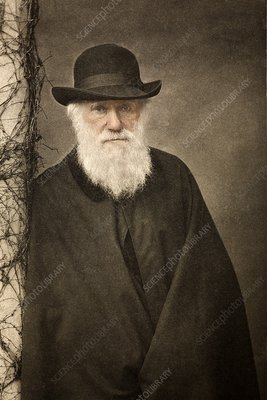 1881 Tinted Charles Darwin portrait