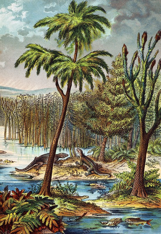 1888 colour lithograph of Permian swamp