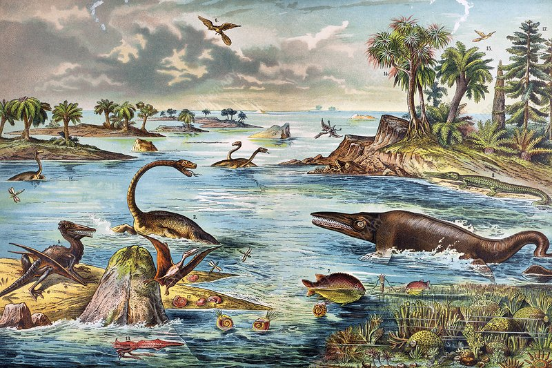 1888 colour lithograph of Jurassic