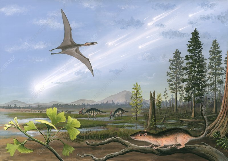 Cretaceous-Tertiary extinction event
