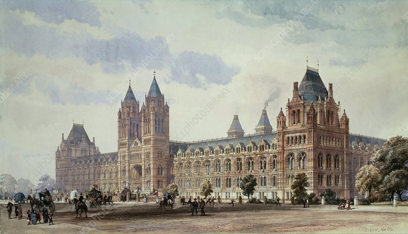 Natural History Museum, London, artwork