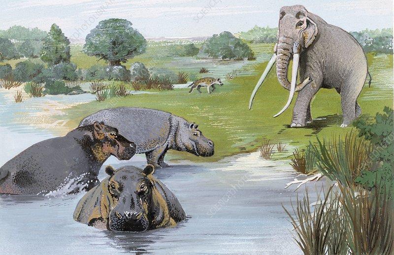 Ipswichian interglacial mammals