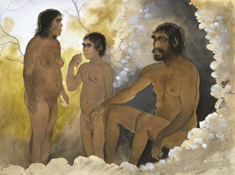 Homo heidelbergensis family, artwork