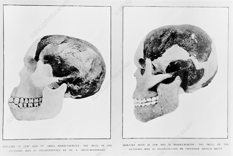 Piltdown Man reconstructions