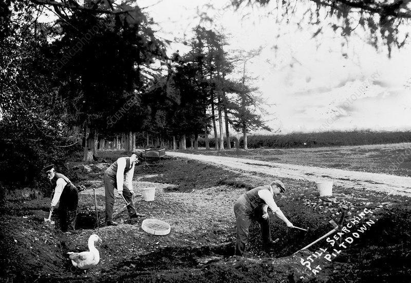 amateur paleontology excavations