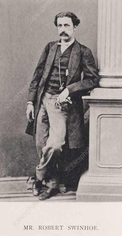 Robert Swinhoe, British naturalist