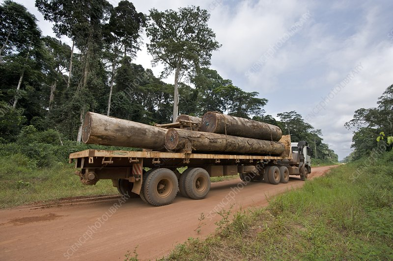 Logging truck in the Congo Basin
