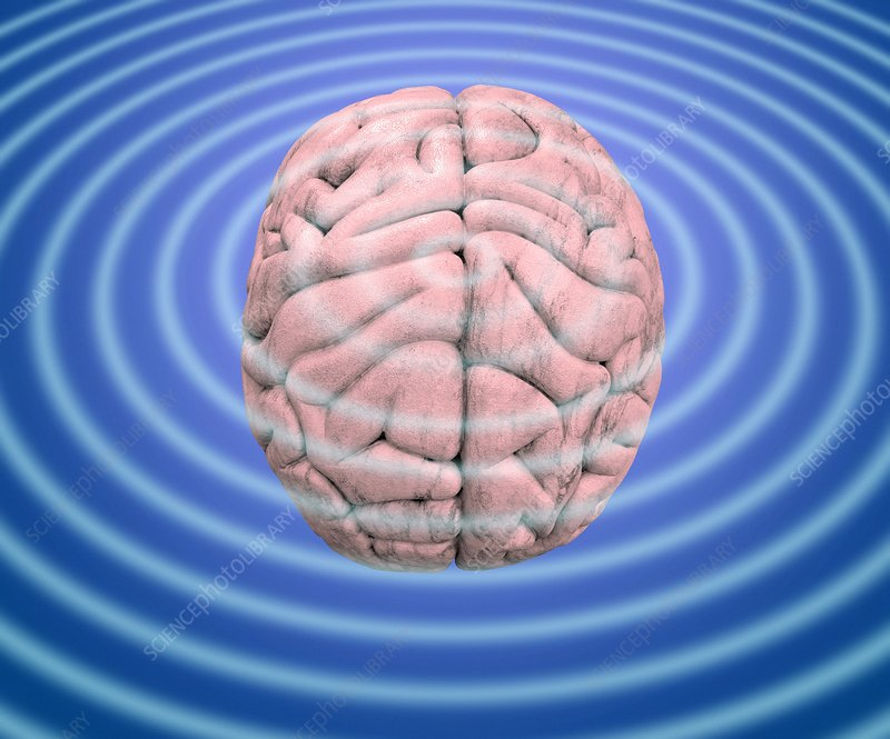 Brain waves, conceptual image