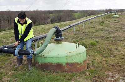 Biogas extraction well