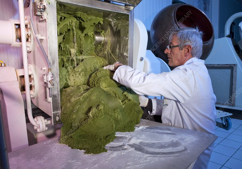 Microalgae food supplement production