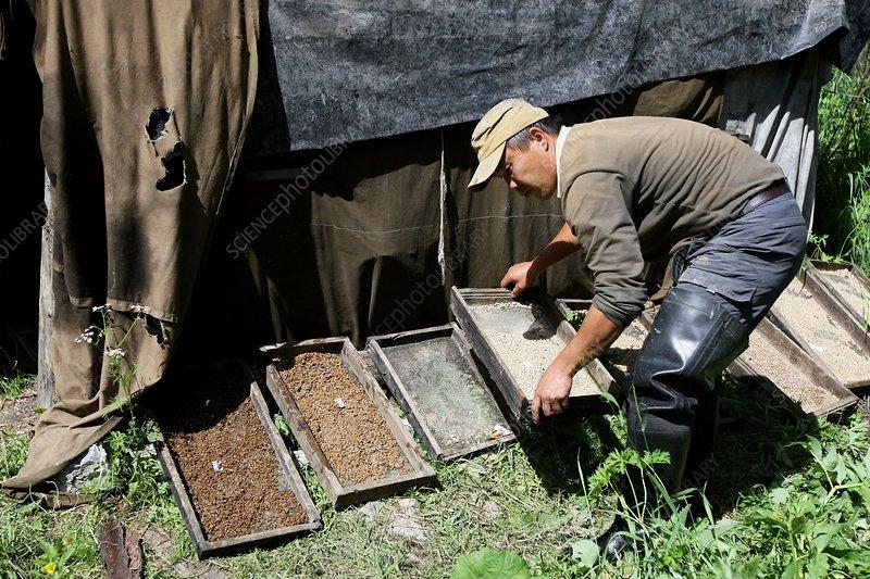 Denisova cave excavation, Russia