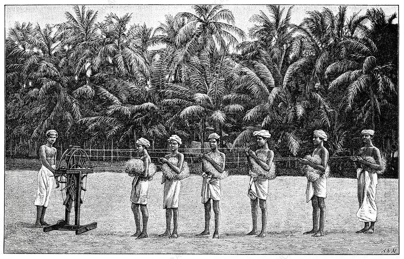 Coconut rope production, 19th century