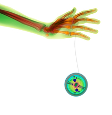 Hand and yo-yo, X-ray